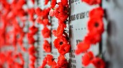 Council tributes for Remembrance Sunday