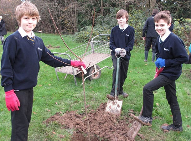 Year 7 Applemore College students proudly planting and labelling an apricot tree